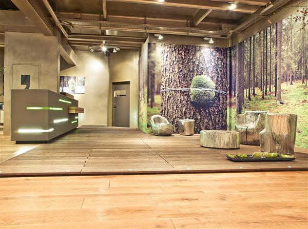 Woodpark Showroom